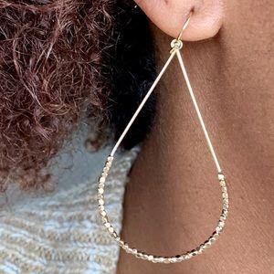 Elongated Hoop Earrings in Gold or Silver